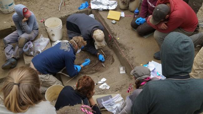 1만1500년 전 어린이 유골 화석을 발견한 알래스카 지층 발굴 현장. - 벤 포터 제공